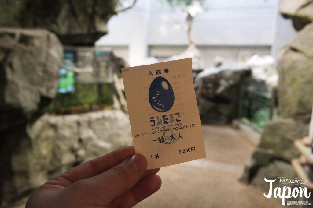 Billet aquarium Umi Tamago, préfecture d'Oita