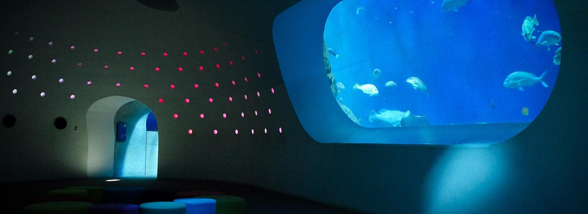 Salle sous-marine aquarium Umi Tamago, préfecture d'Oita