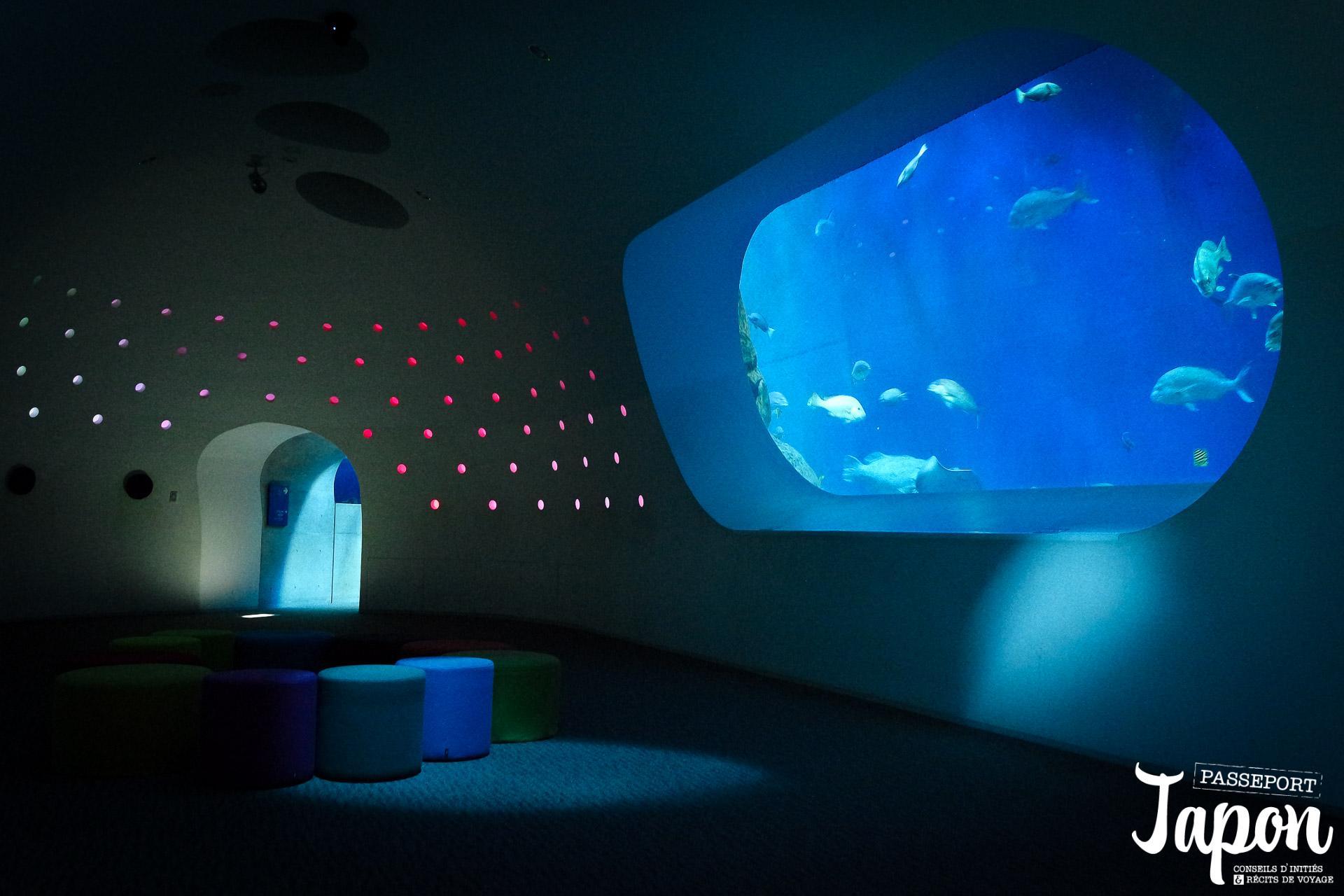 oita-aquarium-umi-tamago-salle-sousmarine