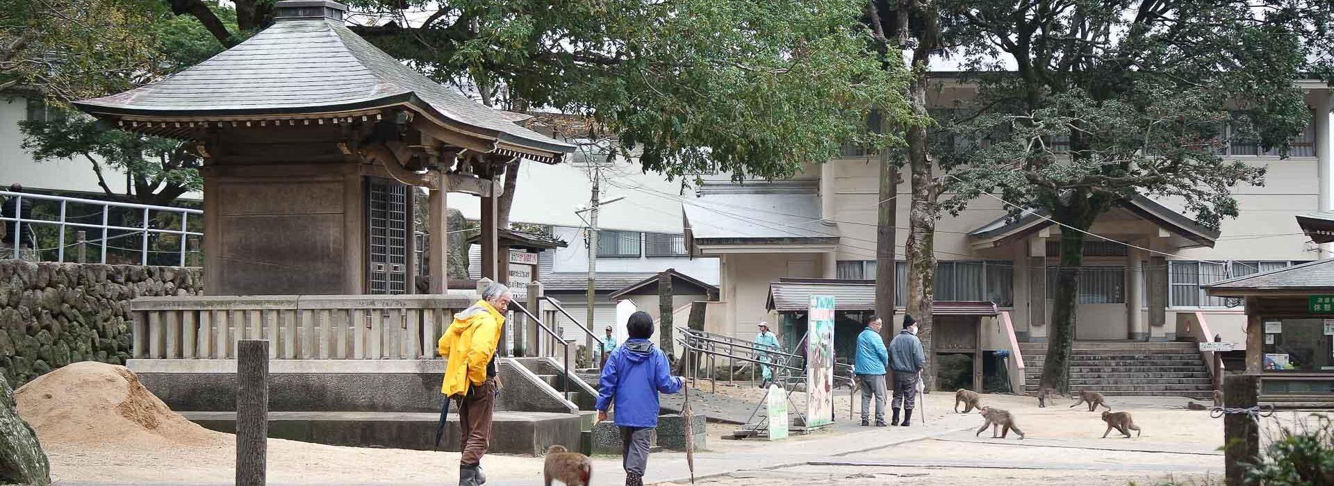 Parc Takasakiyama, préfecture d'Oita