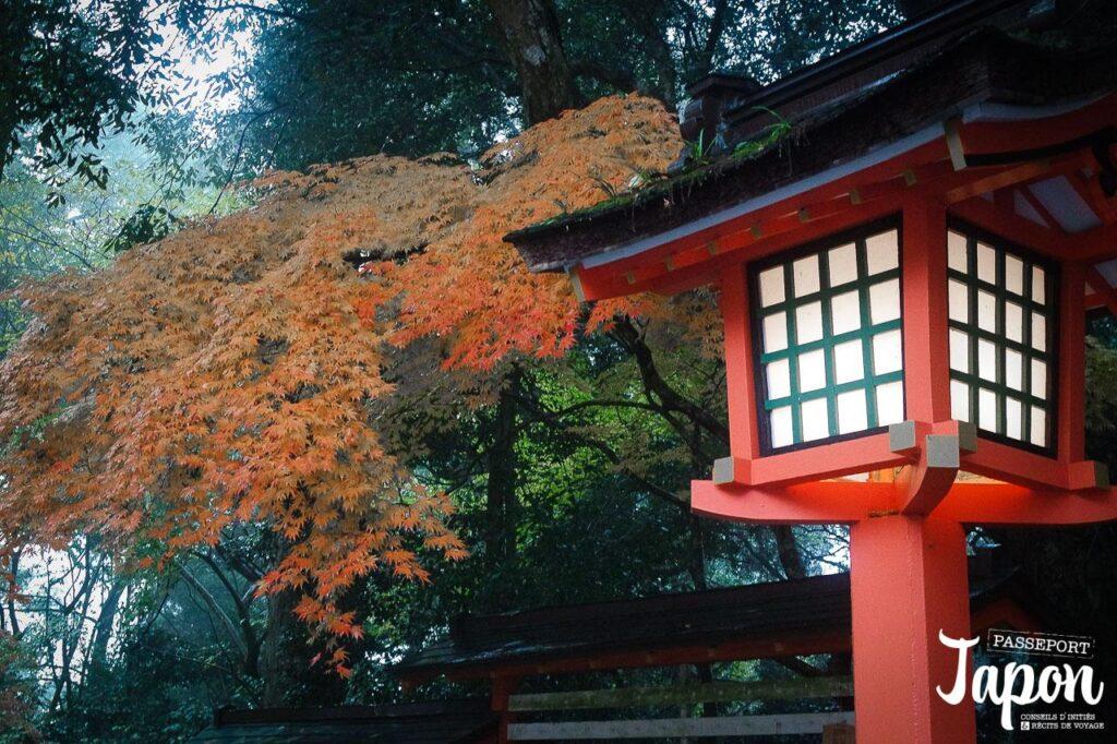 Momiji et lanterne au sanctuaire Usa jingu, Usa, préfecture d'Oita