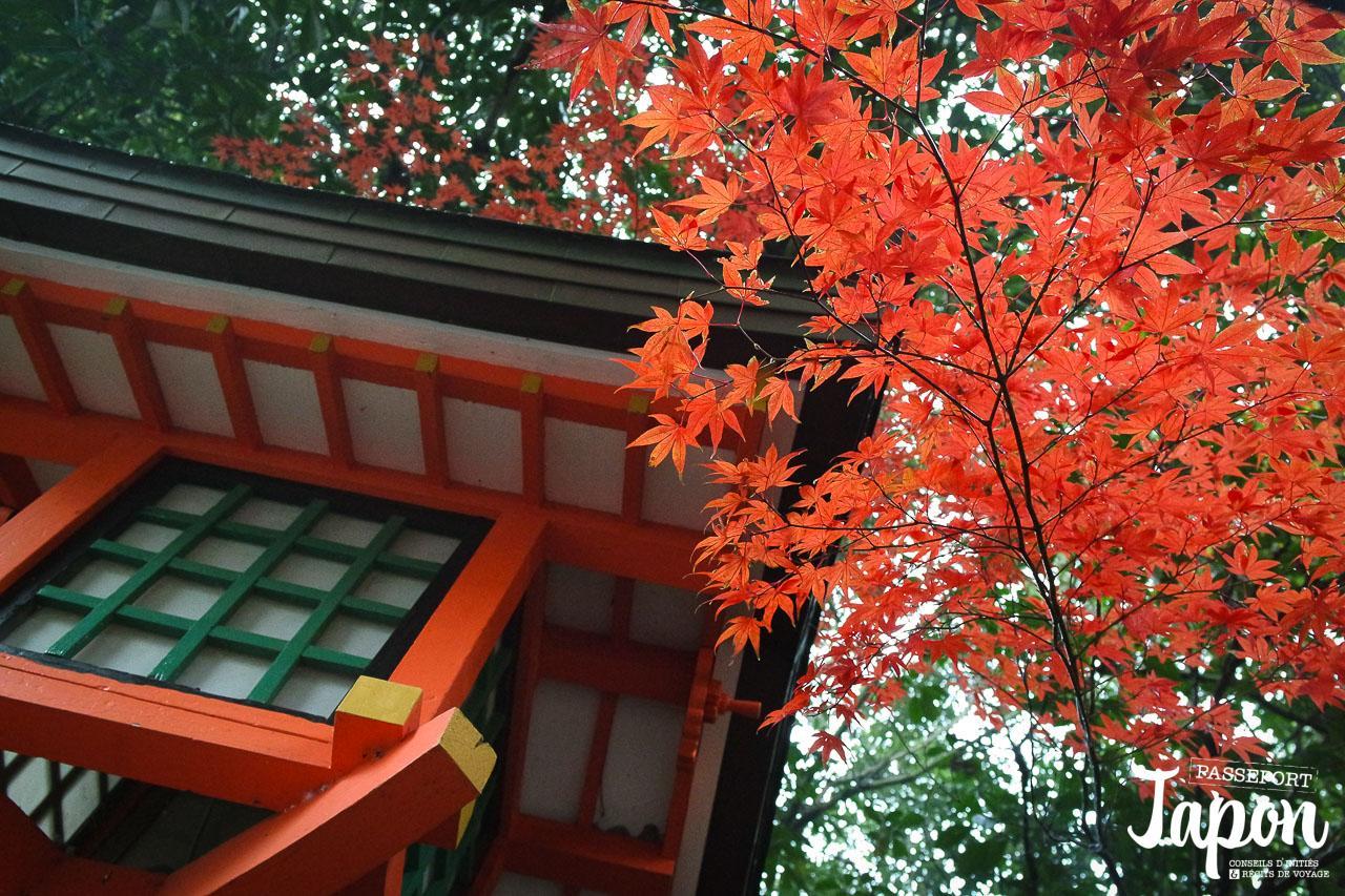 sanctuaire-uasa-jingu-oita-momiji-lanterne
