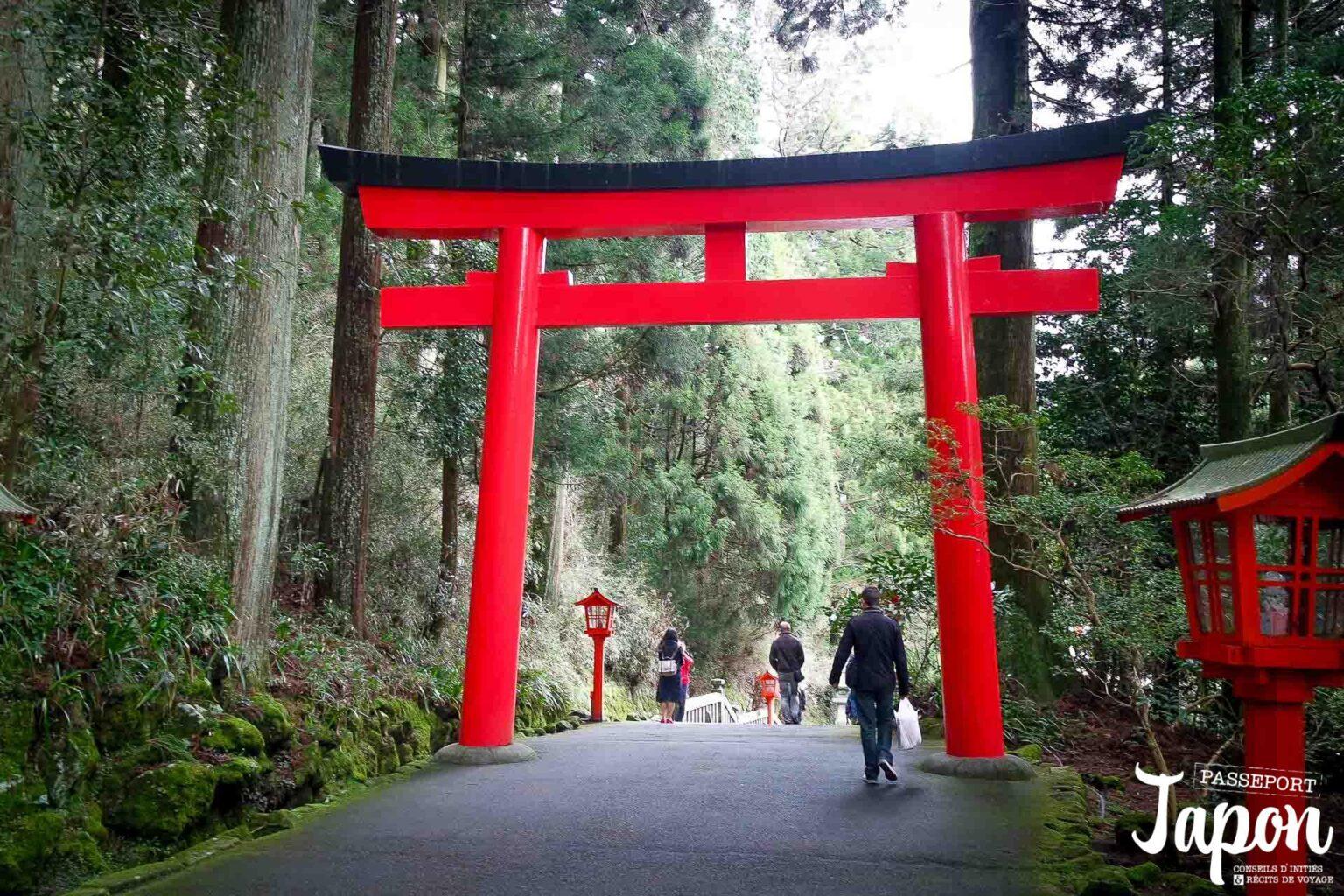 hakone-jinja-torii-foret