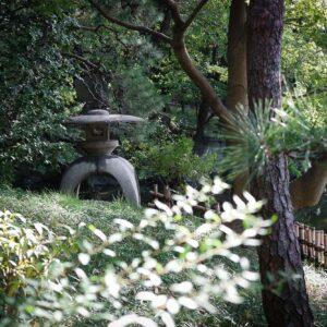 Lanterne de pierre au jardin Tennoji Keitakuen, préfecture d'Osaka