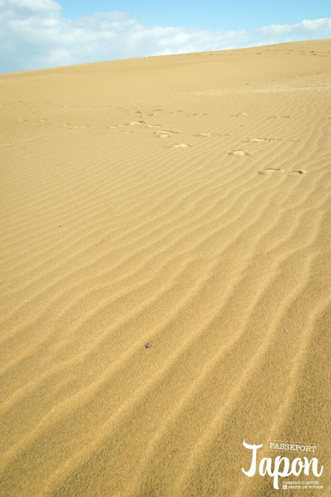 Dunes et fûmon, préfecture de Tottori