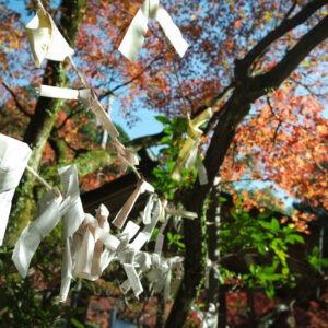 Omikuji au sanctuaire Niiyama de Kunenan, Kanzaki, préfecture de Saga