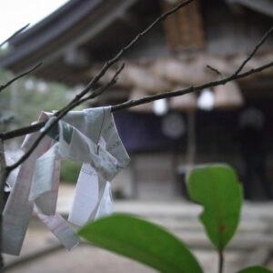 Omikuji au sanctuaire Hakuto-jinja, préfecture de Tottori