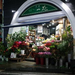 Boutique de fleuriste nocturne, Nagasaki