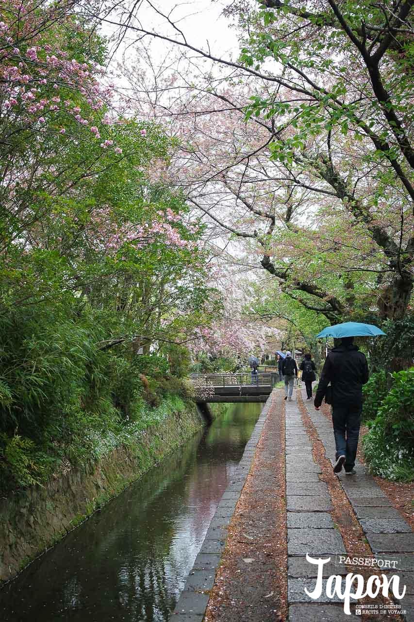 Chemin de la philosophie sous la pluie, préfecture de Kyoto