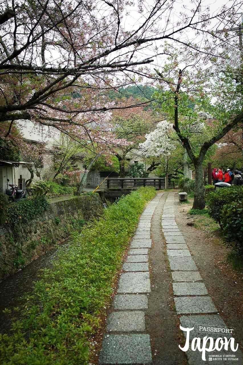 Hanami sur le chemin de la philosophie, préfecture de Kyoto