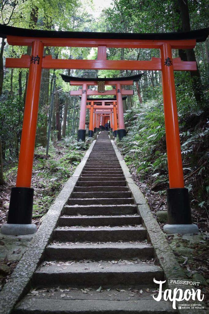 Torii dans la forêt, escalier du sanctuaire Fushimi Inari Taisha, préfecture de Kyoto