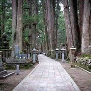Allée principale et lanternes à l'Okunoin de Koyasan, préfecture de Wakayama