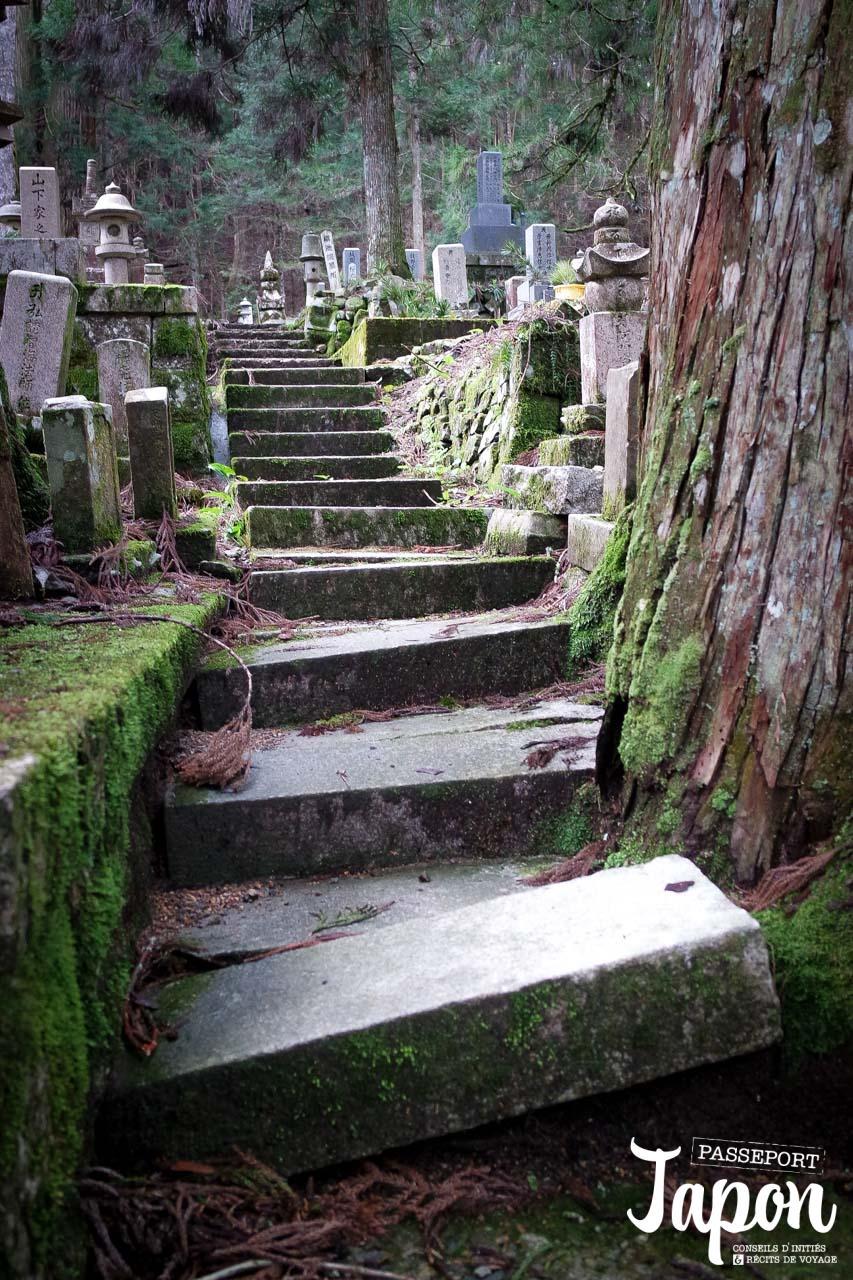 Escalier de pierre, Okunoin de Koyasan, préfecture de Wakayama